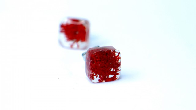 Moss resin earrings…in red!